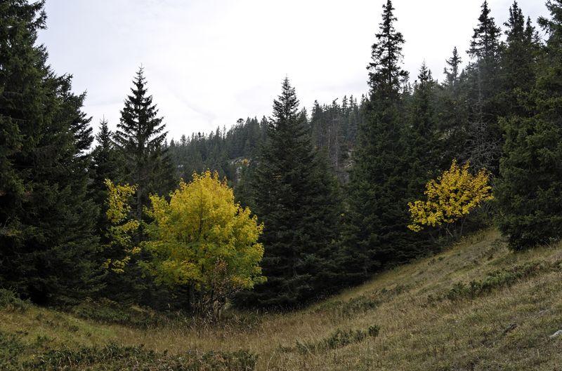 2012-10-0616-54-06