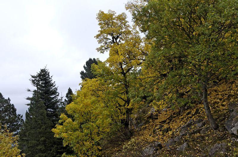 2012-10-0712-19-17