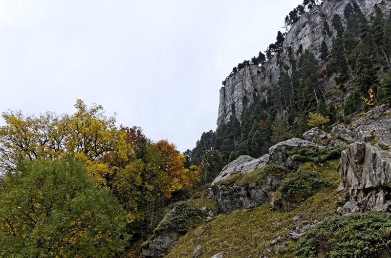 2012-10-0712-19-41