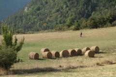 J4_Xbike_Provençal